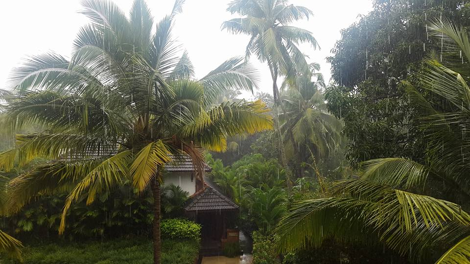 Is there anything prettier than Goa in the rains?